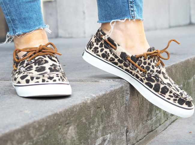 LOOK OF THE DAY: A Leopard's Spots