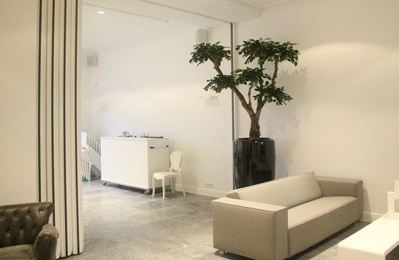 Kunstplanten in je interieur: stijlvol én praktisch